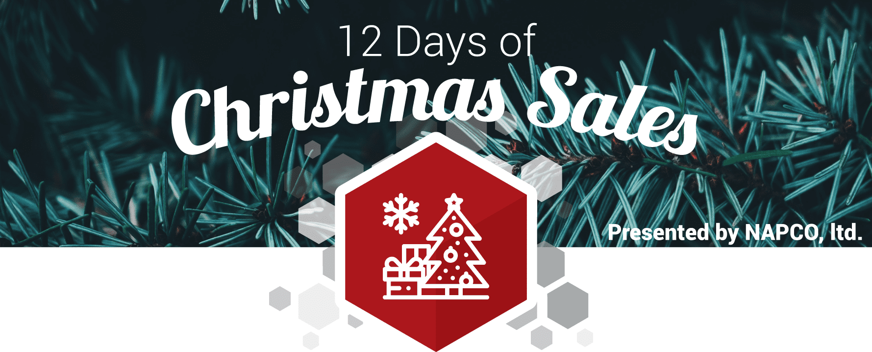 NAPCO 12 Days of Christmas Sale